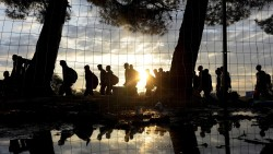 2016-1 refugiats