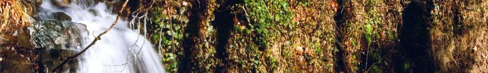 Àrea de Medi Ambient | Rambla Onze de Setembre, 107 | Telèfon 972 46 00 05 | Fax 972 46 43 71 | A/e: mediambient@cassa.cat
